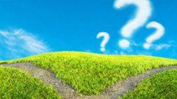 コピー機(複合機)の匂い「オゾン臭」とは?人体へ影響はないの?